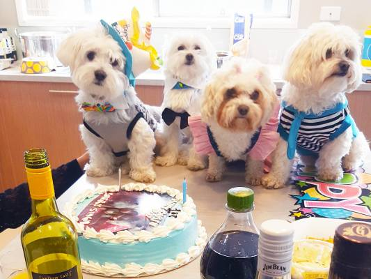 A How-To Guide for Throwing a Pawesome Party for Your Pooch!
