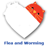 Cat Flea and Worming
