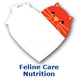 Cat Feline Care Nutrition