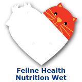 Cat Feline Health Nutrition