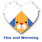 Dog Flea and Worming