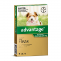 advantage dog small green