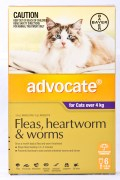 Advocate Large Cat Flea Treatment