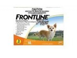 frontline_small_3
