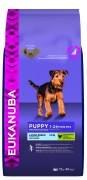 puppy_large_15